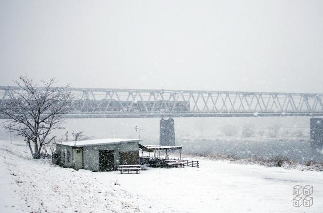 15.たぬきやと雪.jpg